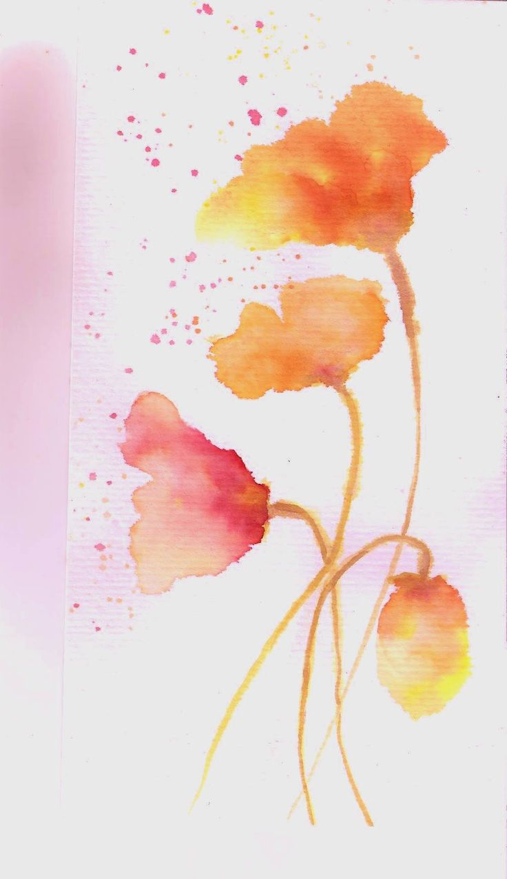 Floral-   (Tintas)