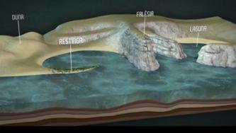A água teve um papel essencial na origem da vida: terá sido em praias e charcos que moléculas orgânicas simples se transmutaram nas proteínas e ácidos nucleicos das primeiras células vivas.  Em milhões de anos, a força da água gerou fenómenos admiráveis.