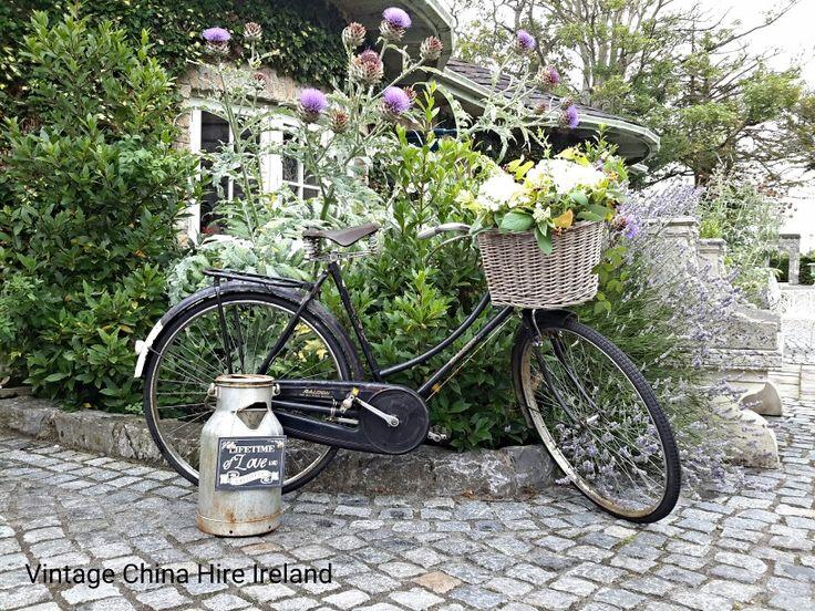339 Best Vintage Bicycle Images On Pinterest Vintage Bicycles