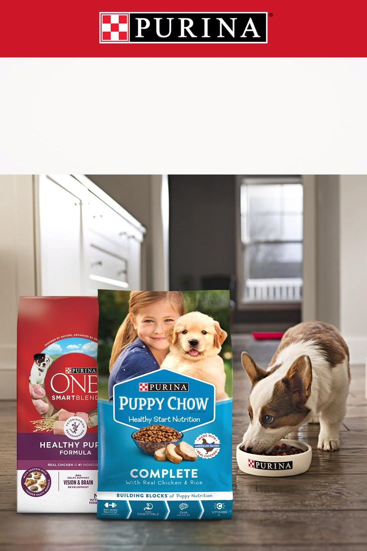 Give Your Puppy The Start They Deserve Purina Puppy Food Is Perfect For Puppyhood It Has 100 Of The Essential Nutrie Video In 2020 Purina Puppy Food Puppies Dog House Diy