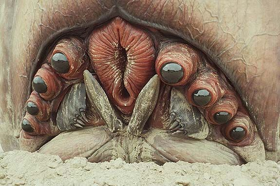 "the 'Brain Bug': from Paul Verhoeven's 1997 movie ""Starship Troopers"""