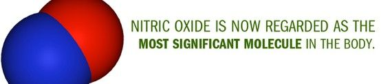 Did you know? NITRIC OXIDE (NO) is now regarded as the MOST SIGNIFICANT Molecule in the Body! Get detailed Nitric Oxide Infos, take profit from my FREE personal support, and/or simply place your NITEWORKS Order NOW  to provide NO to your body cells! Sabrina INDEPENDENT HERBALIFE DISTRIBUTOR  since 1994 https://www.goherbalife.com/goherb/ Call: USA: 001- 214 329 0702 Italia: 0039- 346 24 52 282 Deutschland: 0049- 5233 70 93 696 Skype: sabrinaefabio