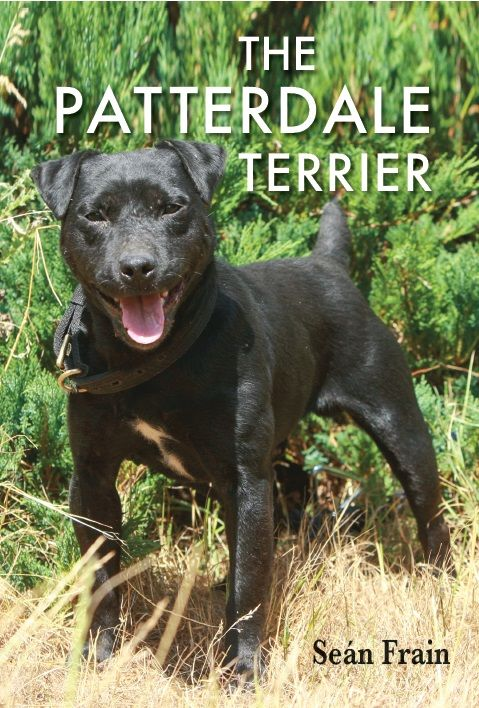 The Patterdale Terrier by Seán Frain | Quiller Publishing. Reprint. This book is a detailed study of the Patterdale terrier which covers everything the owner, or prospective owner, needs to know, from the history of the breed, through working, breeding, health training and showing to the suitability of this breed as a family pet. #terrier #dog #training #management #reprint