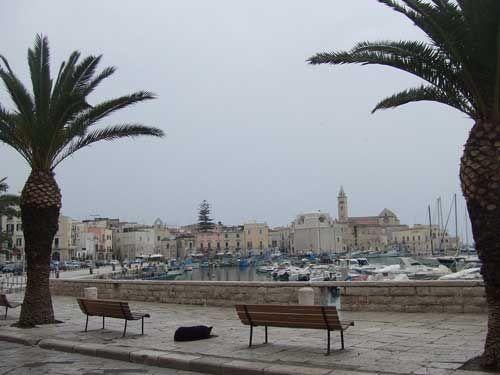 Trani, Italy. I used to live in Bisceglia right next to  Trani.