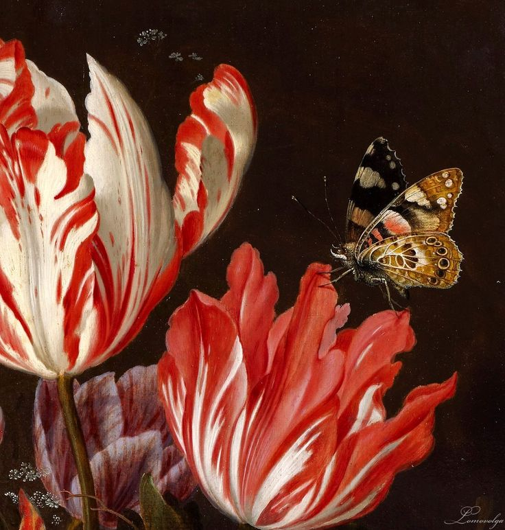 """Balthasar van der Ast """"Still Life of Variegated Tulips in a Ceramic Vase, with a Wasp, Dragonfly, Butterfly and Lizard"""" 1625 (detail)  Balthasar van der Ast (1593/94 – 1657) Dutch Golden Age painter.     oil on oak panel  Private collection"""