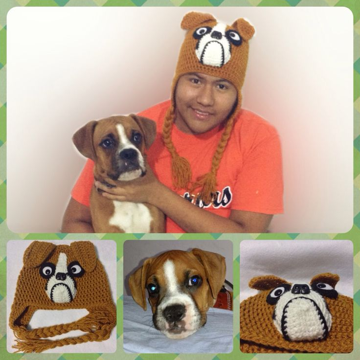 Knitting Patterns For Boxer Dogs : 1000+ images about HATS on Pinterest Free crochet hat patterns, Free patter...