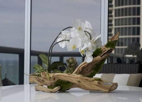 Resultado de imagem para phalaenopsis orchid centerpieces