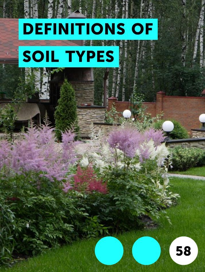 Types Of Gardens And Their Characteristics