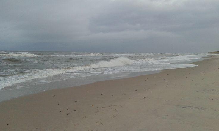 Seashore in November