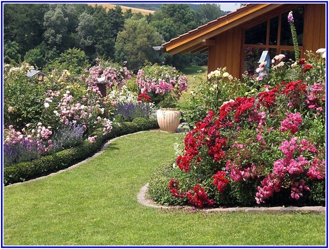 nice Rose Garden Landscape