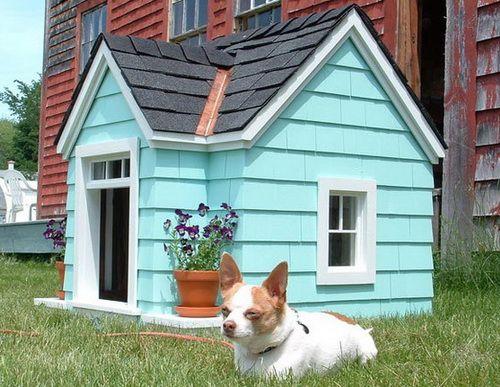 Creative Dog House Design Ideas_14