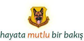 Logo http://www.almankurdu.com/