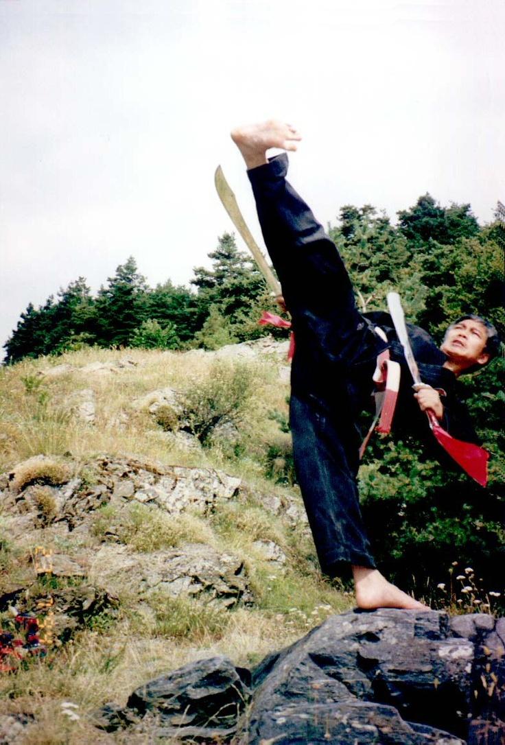 Los que me han conocido fuera de Italia no lo saben pero yo practicaba una Arte Marcial llamada Viet Vo Dao y el es mi Maestro.