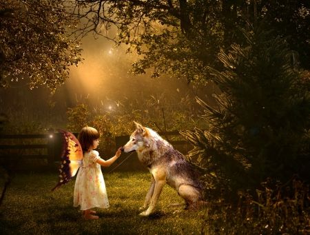 Enchanted Fairy Wallpaper