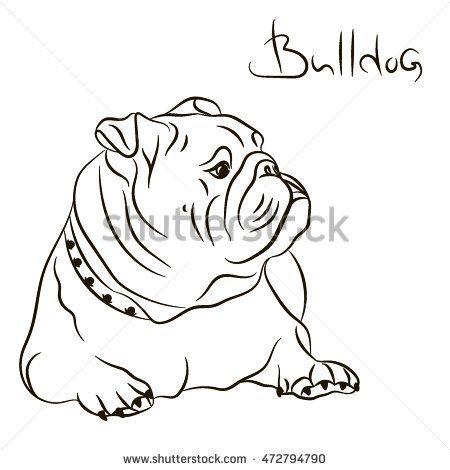 7 mejores imágenes de bulldogs en Pinterest | Bulldog inglés ...