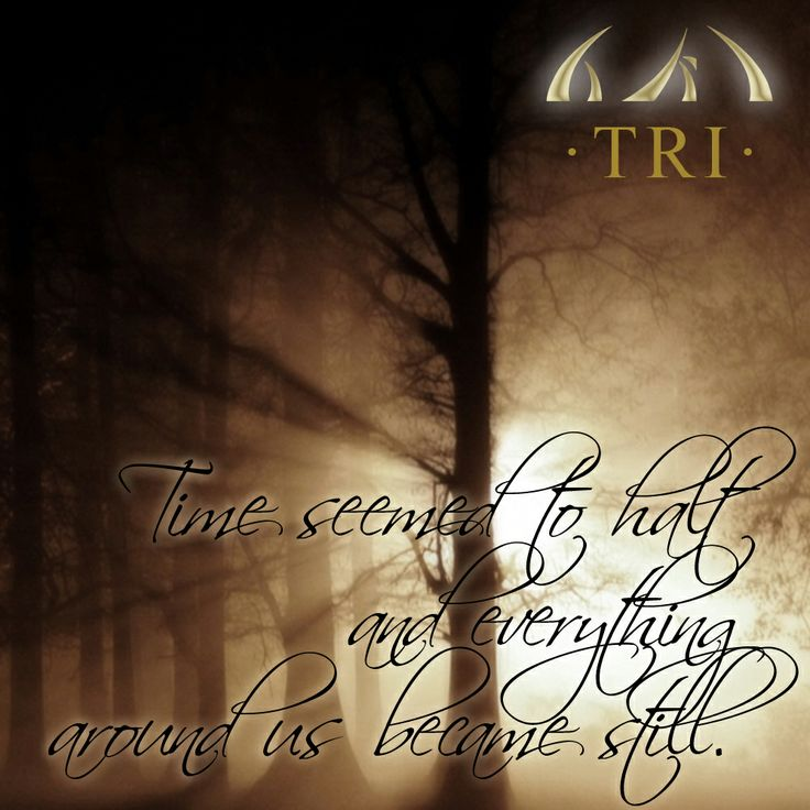 """""""Time seemed to halt and everything around us became still.""""  TRI - Chapter one: The Prophecy Booktrailer: http://youtu.be/9m9a8Dv_T9k Ebook: http://myBook.to/TRI Site: http://www.prophecy-of-tri.com/books-english/ Free preview: http://www.prophecy-of-tri.com/wp-content/uploads/2012/01/Tri-The-Prophecy_preview.pdf Facebook: https://www.facebook.com/pages/TRI-Chapter-one-The-Prophecy/226237360898072"""