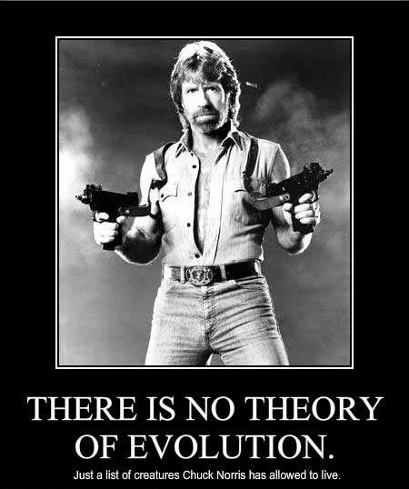 Best Chuck Norris Images On Pinterest Jokes Chuck Norris - 22 ridiculous chuck norris memes