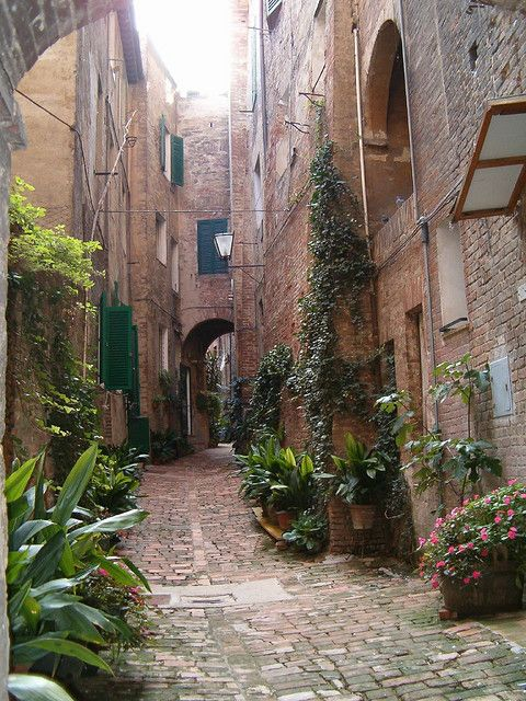 Small street in Sienna, Italy. Been there. Want to go back really really bad.