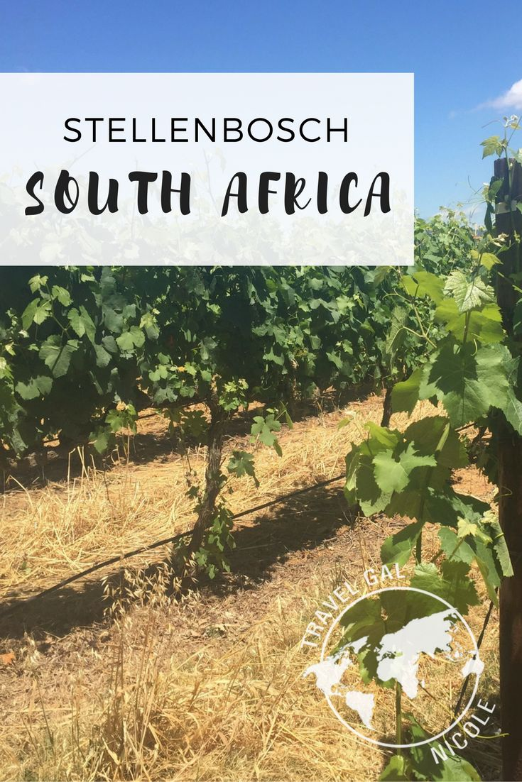 While in Cape Town I was told there were five things you really need to do to see Cape Town and the surrounding areas – Table Mountain, Wine Tour, Townships, Cape of Good Hope and Robben Island.