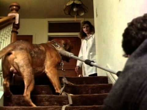 Turner And Hooch - Trailer from the movie. Tom Hanks was just a baby-faced young man here. Now I feel old.