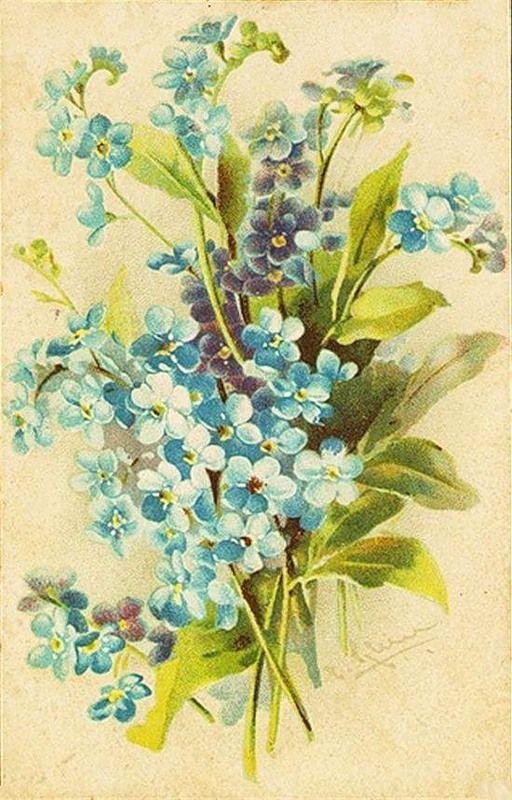 Открытка с цветами незабудки, днем рождения