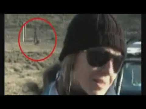 """ALIEN SEEN ON LIVE TV BROADCAST! This is actually a brilliant hoax that the news station played on it's audience that got way out of hand! The whole story was shown on an episode of """"Fact or Faked""""."""