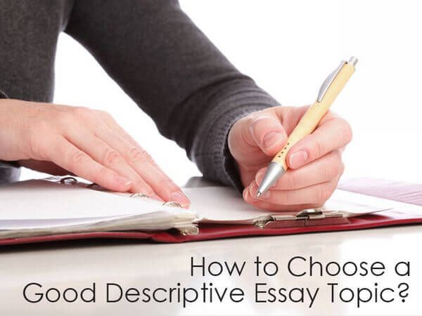 articles on essay writing services reviews blog