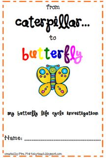 Butterfly investigation booklet.