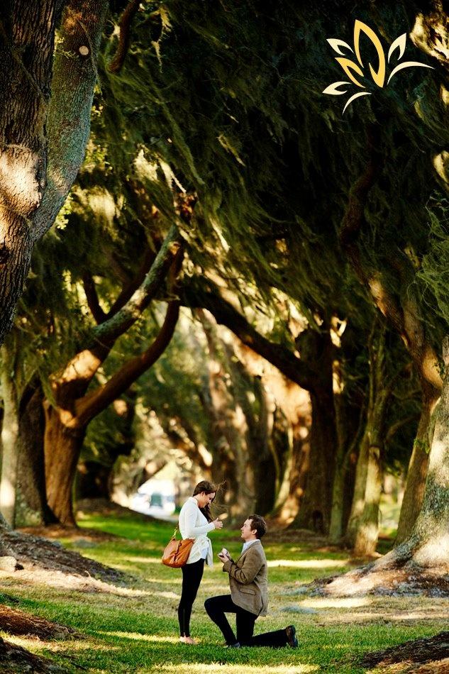 183 Best Proposals Images On Pinterest Proposals Engagement Pics
