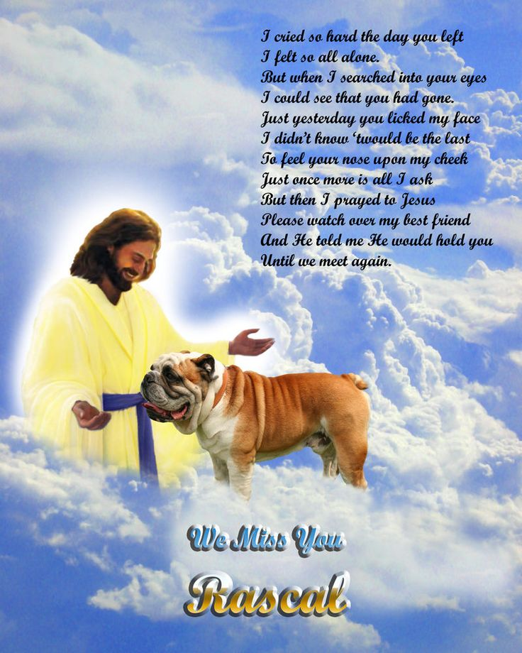 Bulldog Dog Memorial-w/Jesus/Poem-Personalized w/Pet's ...
