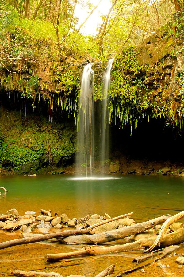 Twin Falls - Maui, Hawaii...I've been to Maui, but I was little at the time. I didn't see places like this!!