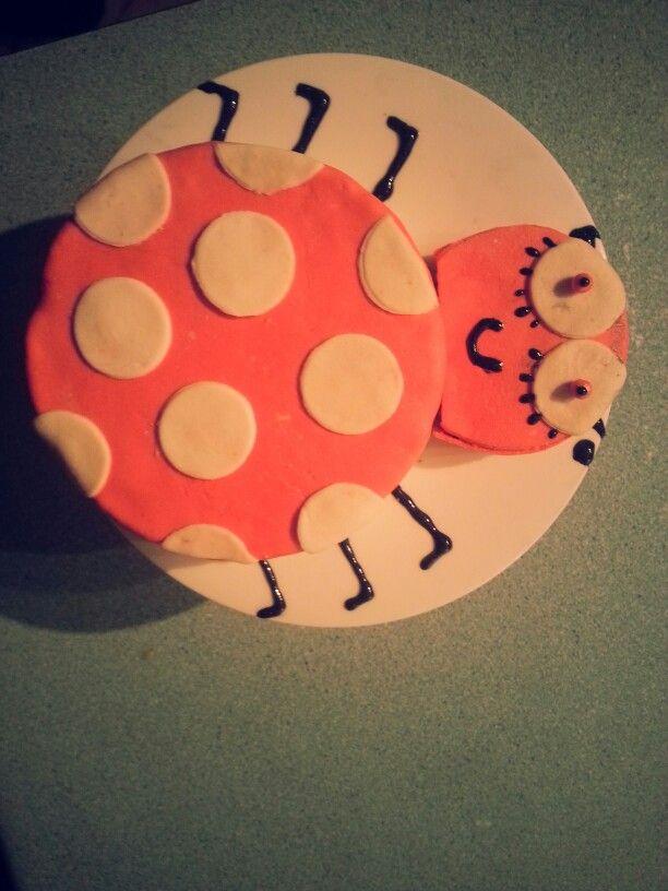 My Lady Bug Cake