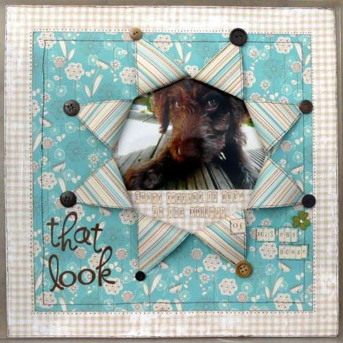 I'm so doing this layout with the pics of Chewie after he chewed up Caitlyn's bed...