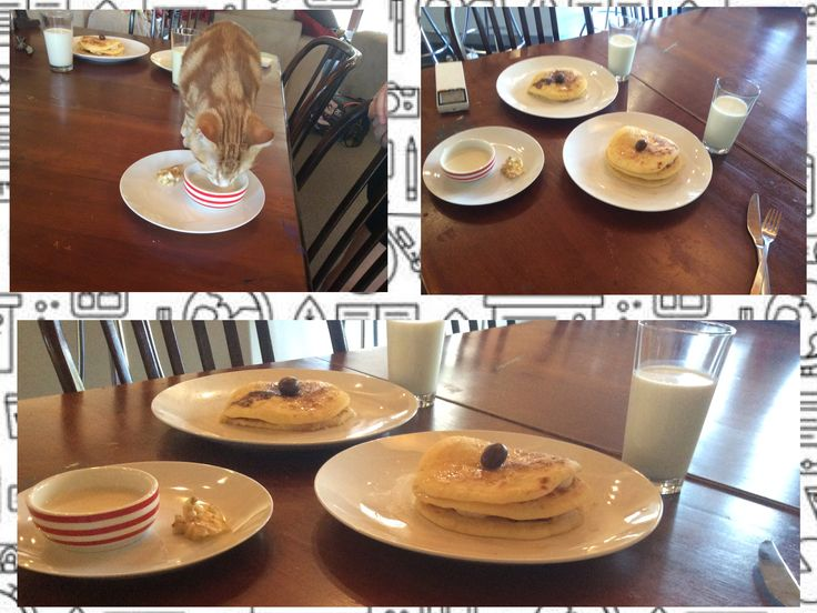 Yummy breakfast with the cat pancakes and milk