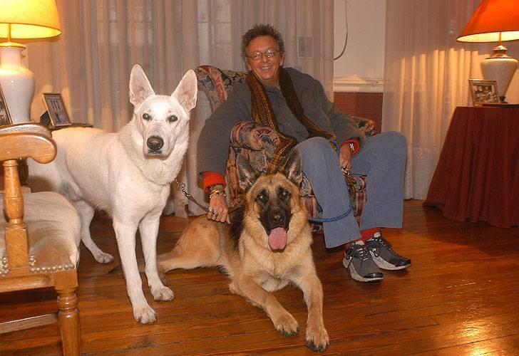Famosos: Pepito Cibrian y sus perros.