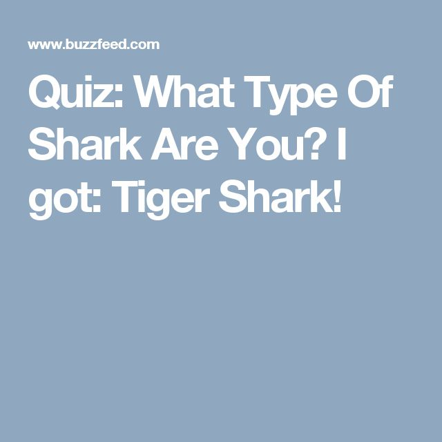 Quiz: What Type Of Shark Are You? I got: Tiger Shark!
