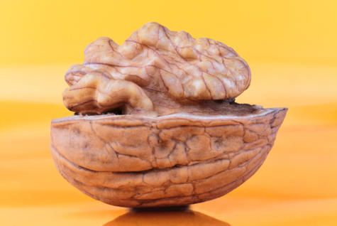 Walnuts Show Promise for Alzheimers Prevention http://www.rodalenews.com/walnuts-alzheimers