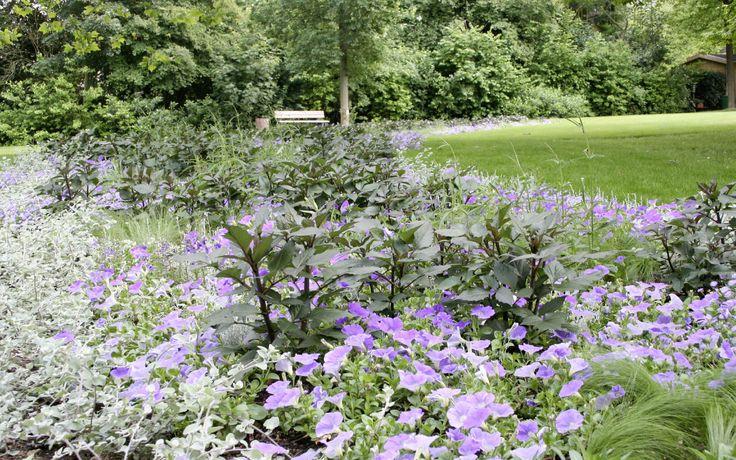 Mark Krieger Planting Design. Landesgartenschau Bad Essen 2010