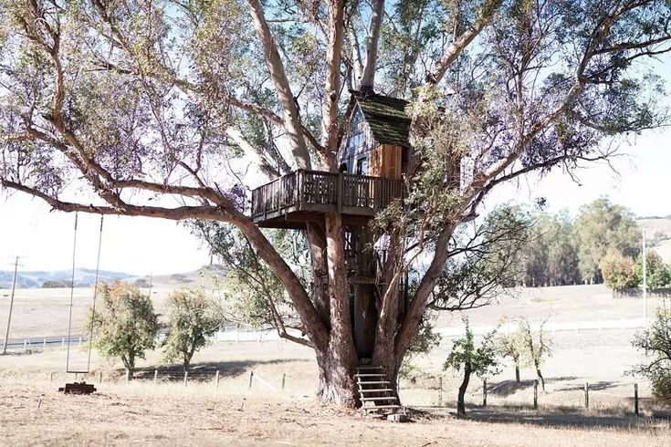 the tree house in California