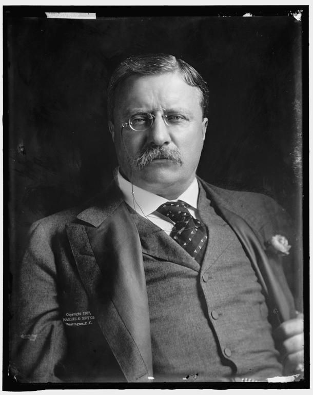 Teddy roosevelts personality
