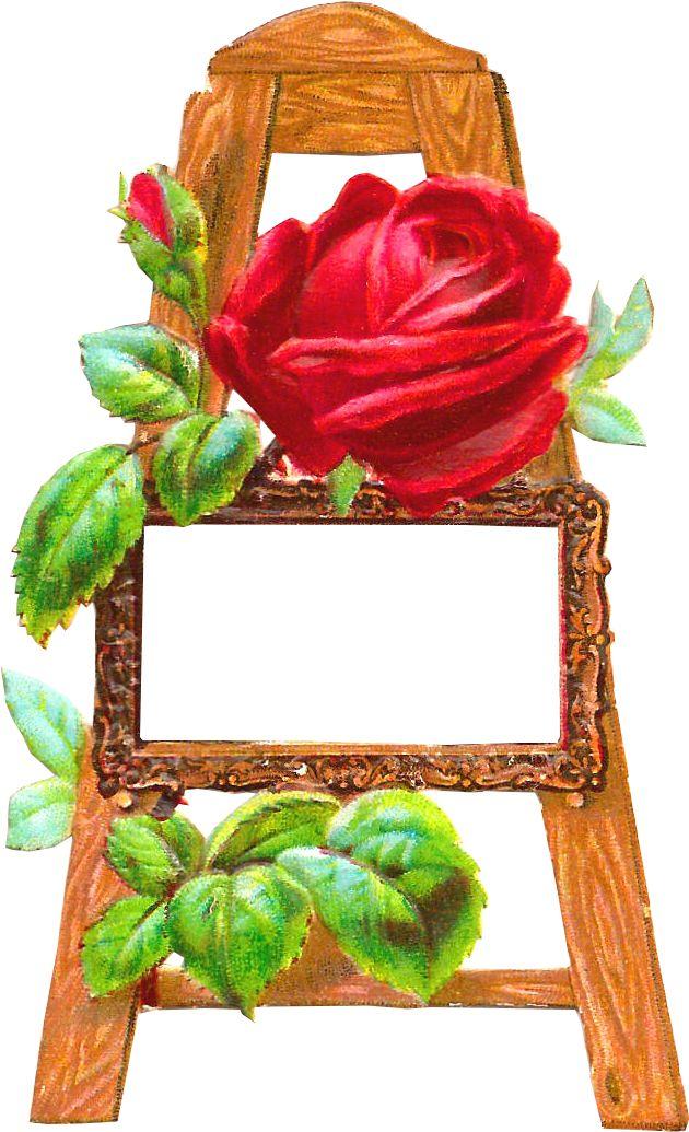 redroseeasel.1.png (630×1035)