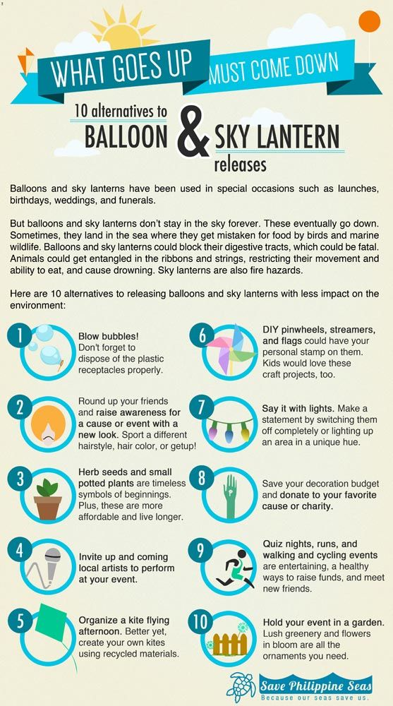 environmental impact of balloon releases - Google Search