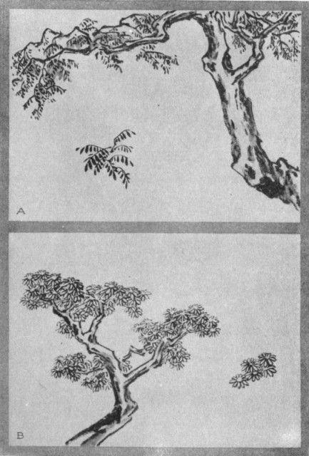 Wistaria Dot (a). Chrysanthemum Dot (b). Plate XXXII.