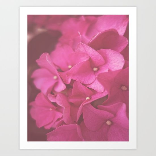 Hydrangea in pink, lovely print for your home. By Herself Designs