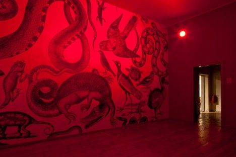 Carnovsky Collective - RGB Room in Red
