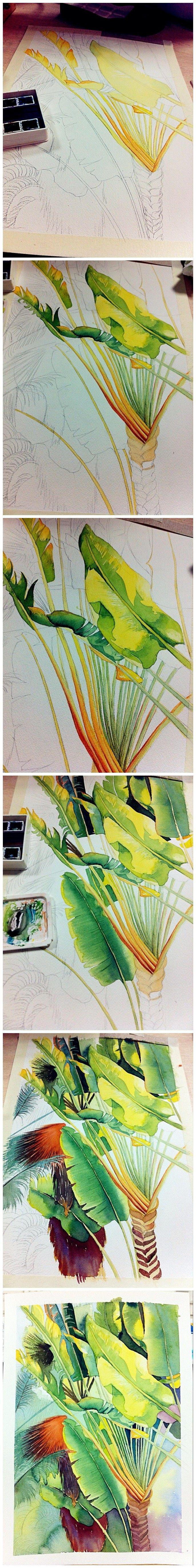 watercolor http://www.marjanb.myShaklee.com