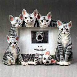 tabby cat picture frame 2600