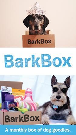 Not only for our dog, but this is a great gift idea for the dog lovers in your life for holidays and such! A box of high quality dog products for your pup, delivered to your door every month! #pets #pet #dog