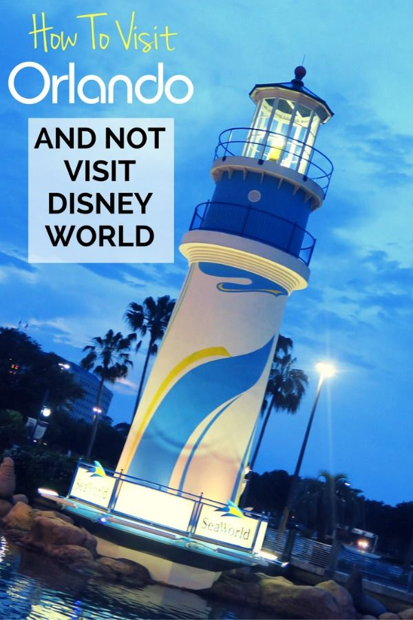 Orlando without Disney?: Is it possible to visit central Florida and not visit Walt Disney World? Yes! Top Orlando attractions for families, plus what to do and where to stay.