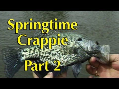 Springtime Crappie Tips 2 - YouTube